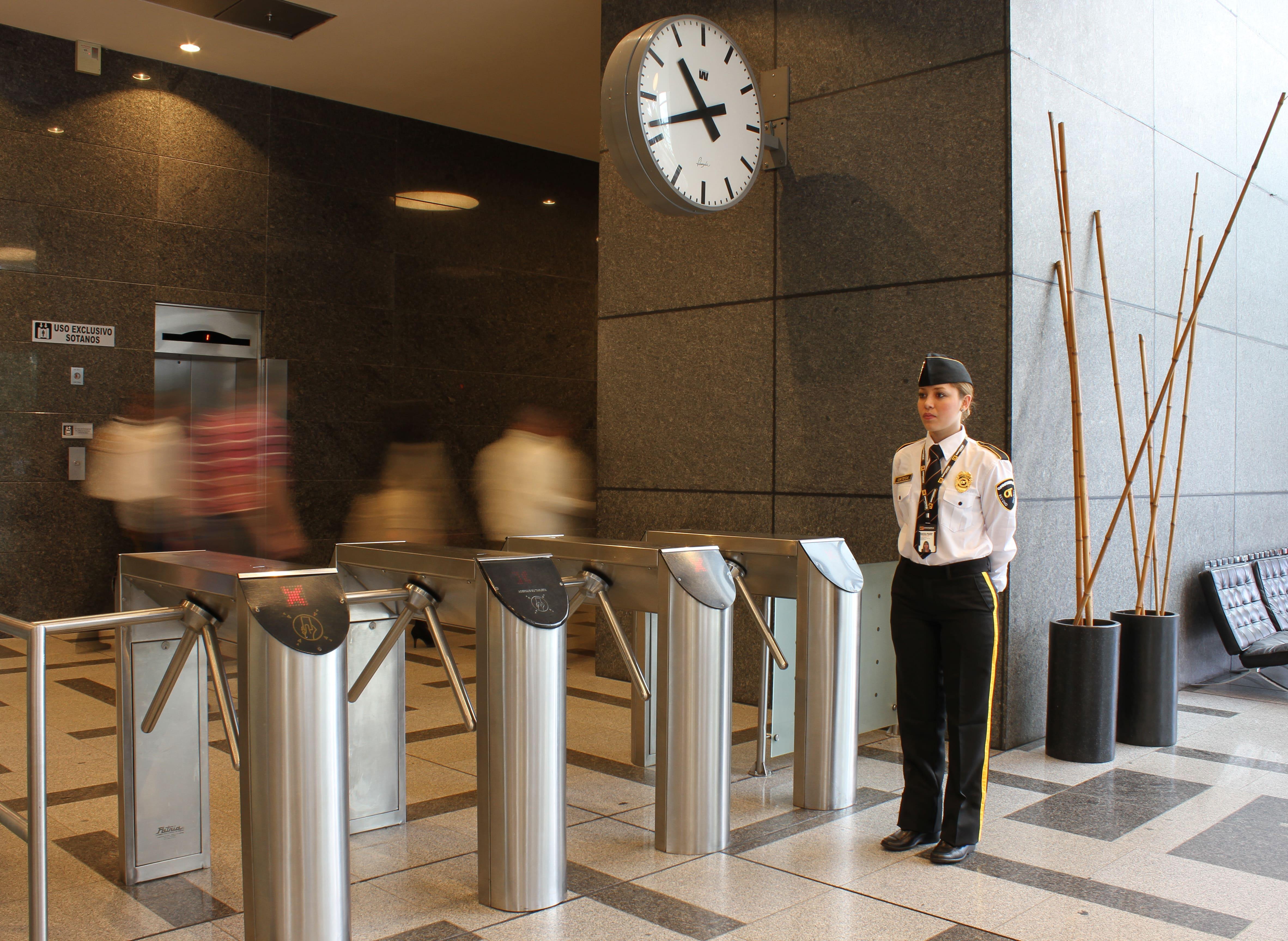 servicios de seguridad privada, omnitempus